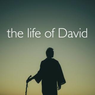life_of_david_500x500